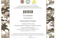 Диплом Григорьев