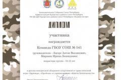 Диплом команде ГБОУ СОШ 541